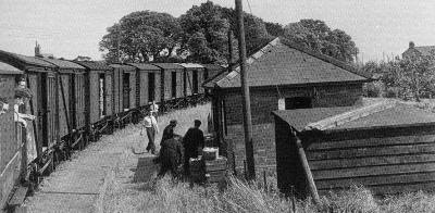 Loading fruit at Elm Bridge on 7th June 1950