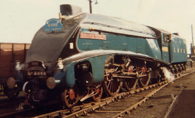 Preserved A4 No. 4498 'Sir Nigel Gresley' in the late 1960s at Philadelphia (A. Willis)